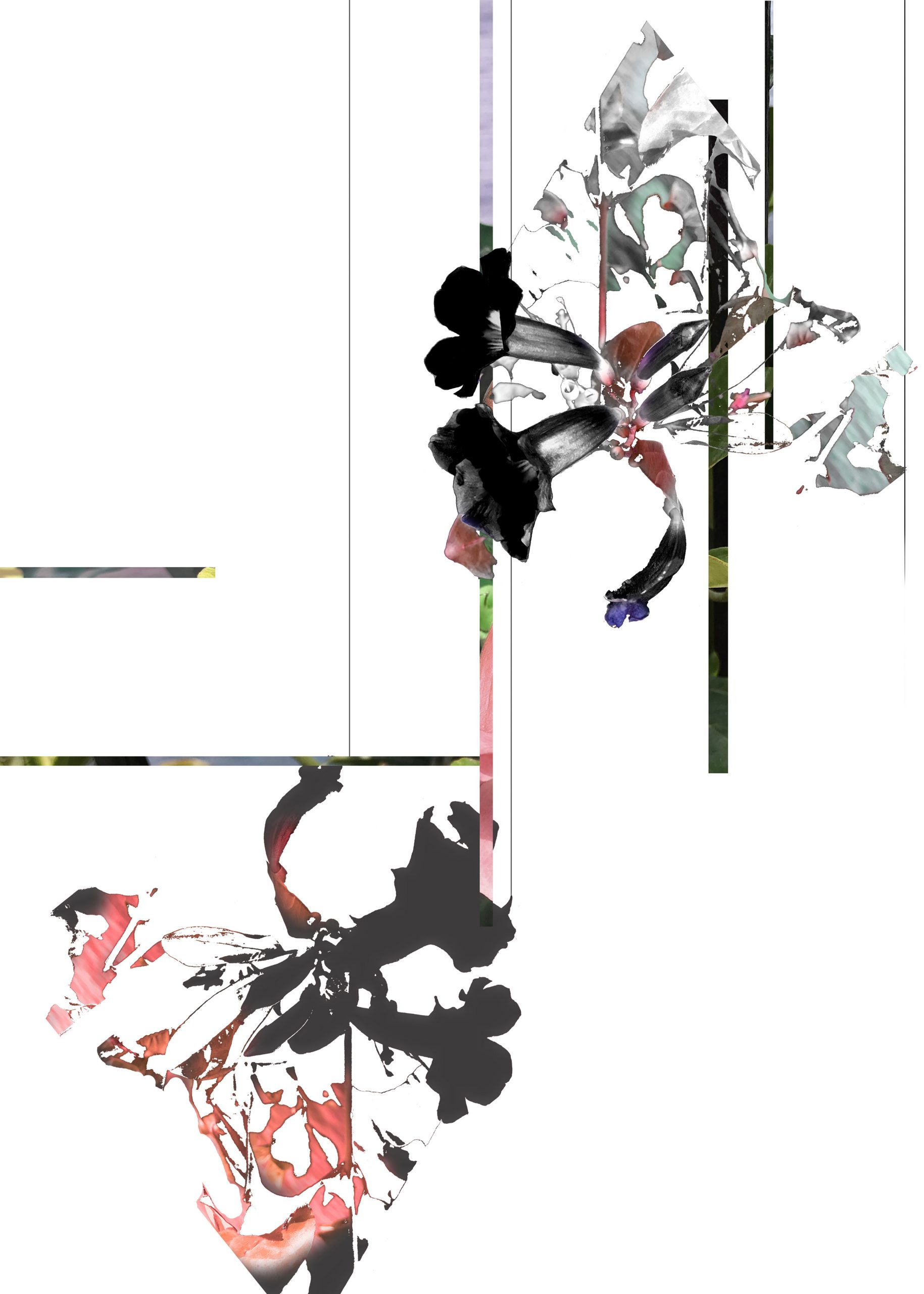 Untitled_Ai Sato low
